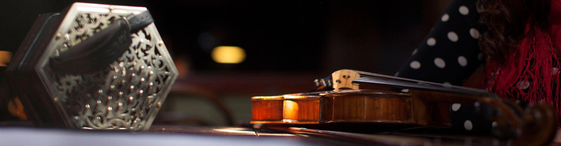 concertinafiddle.jpg